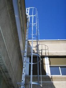 Escalera de gato crinoline con jaula de protecci n dorsal - Escalera de gato con proteccion ...